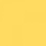 LEE FILTERS 102 feuille Gélatine 122 X 53 cm 102 ambre leger
