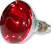 LAMPE infrarouge Philips 125mm IR 230V 150W Filtre rouge