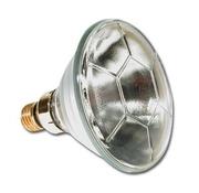 Lampe PAR 38 24V 120W Philips pour bassin E27 code 38073915