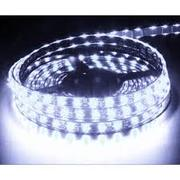 Ruban LED 24V Blanc Froid Glacial 7500K 60 LEDS 5050 900 lumens par metre IP65 Rouleau de 5m